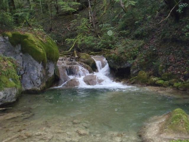 ruisseau - Ruisseau cascadeur P4160012