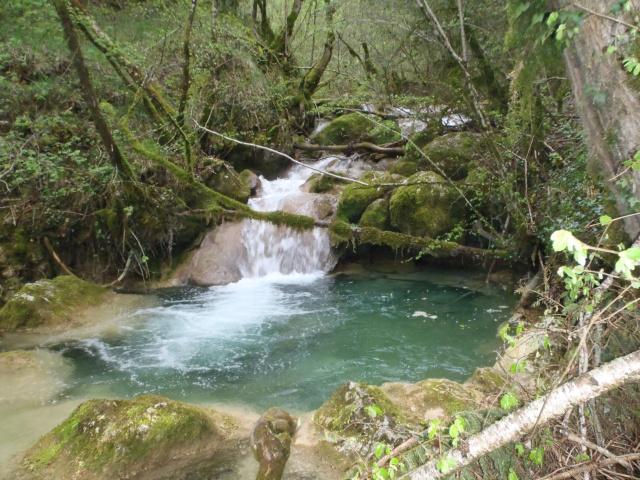 ruisseau - Ruisseau cascadeur P4160014