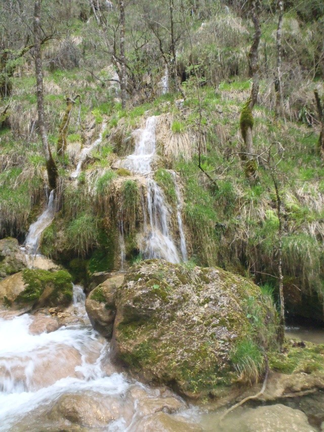 ruisseau - Ruisseau cascadeur P4160017