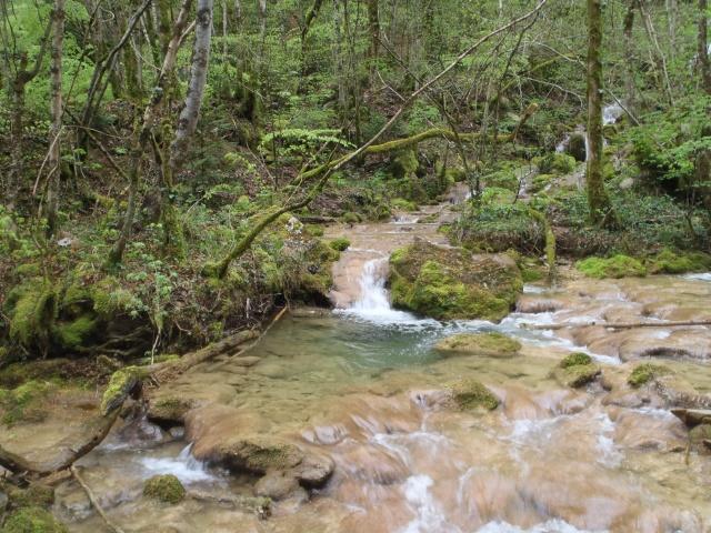 ruisseau - Ruisseau cascadeur P4160026