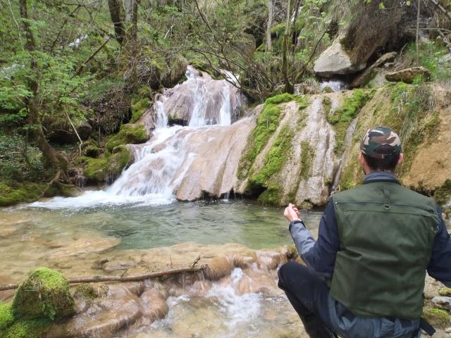 ruisseau - Ruisseau cascadeur P4160027