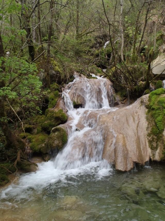 ruisseau - Ruisseau cascadeur P4160028