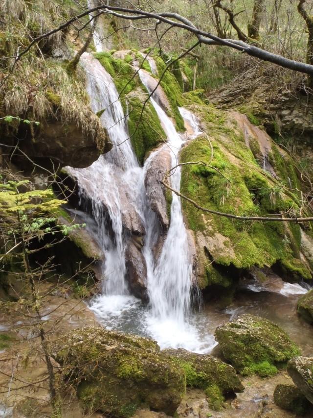 ruisseau - Ruisseau cascadeur P4160029