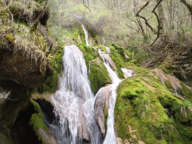 ruisseau - Ruisseau cascadeur P4160030