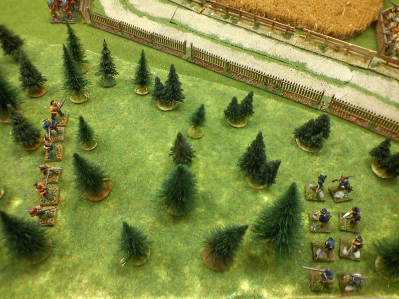 Bataille rangée dans le secteur du Lac Champlain Dsc00027