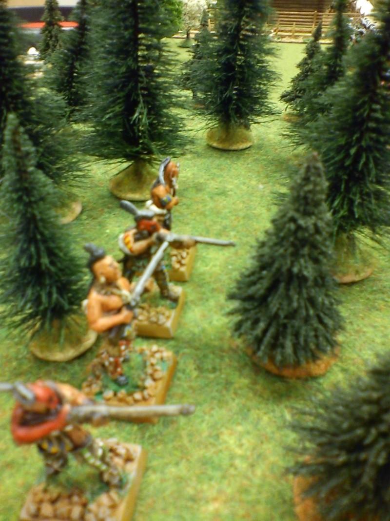 Bataille rangée dans le secteur du Lac Champlain Dsc00038
