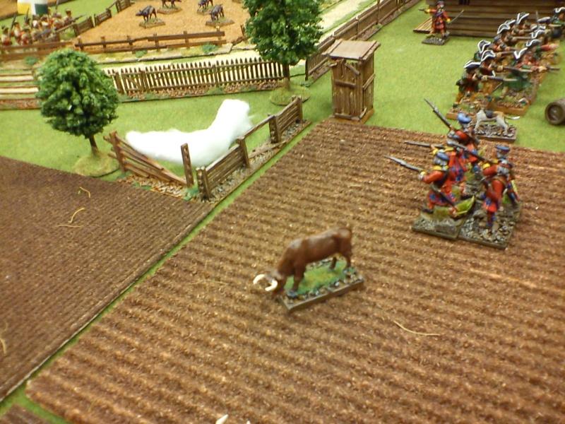 Bataille rangée dans le secteur du Lac Champlain Dsc00046
