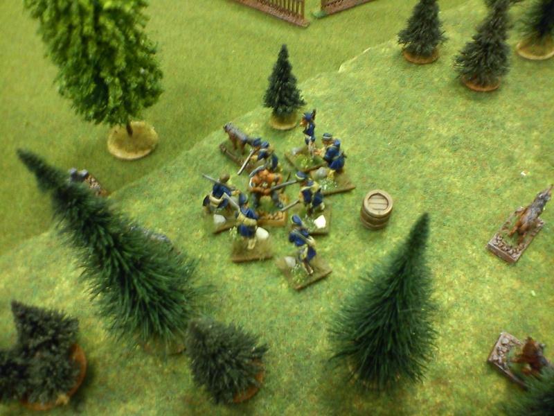 Bataille rangée dans le secteur du Lac Champlain Dsc00144