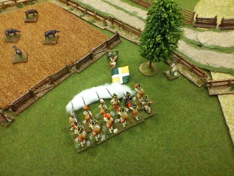Bataille rangée dans le secteur du Lac Champlain Dsc00145