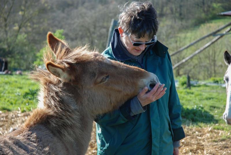 DIABLOTINE - ONC Mule née en 2014 - adoptée en juin 2016 par Amélie Dsc_0011