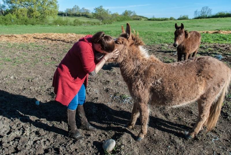 DIABLOTINE - ONC Mule née en 2014 - adoptée en juin 2016 par Amélie Dsc_0056
