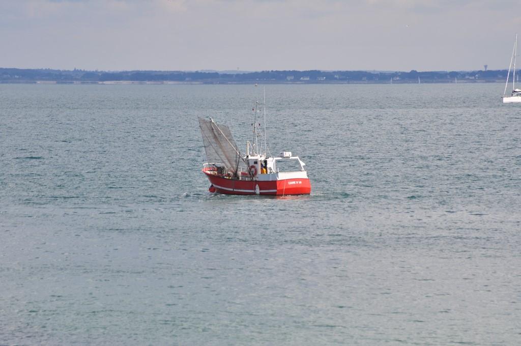Pêche petit bâteau côtier Ayrodr21