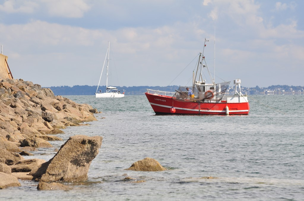 Pêche petit bâteau côtier Ayrodr22