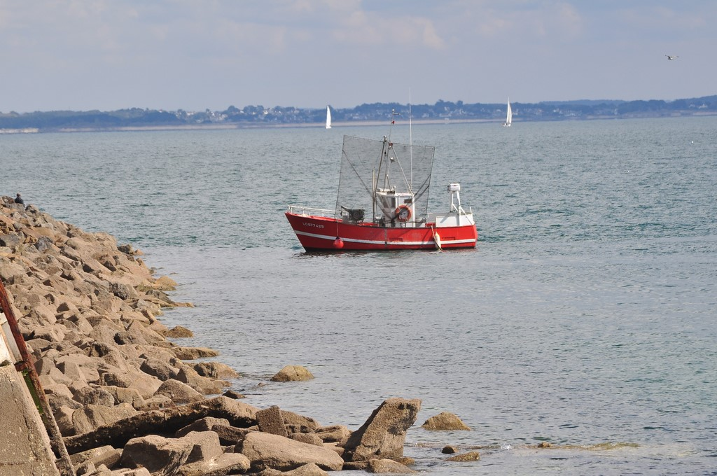 Pêche petit bâteau côtier Ayrodr23