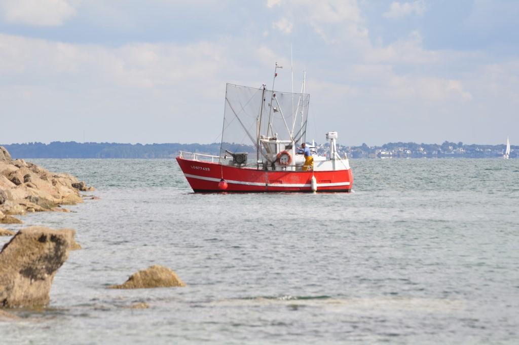 Pêche petit bâteau côtier Ayrodr30