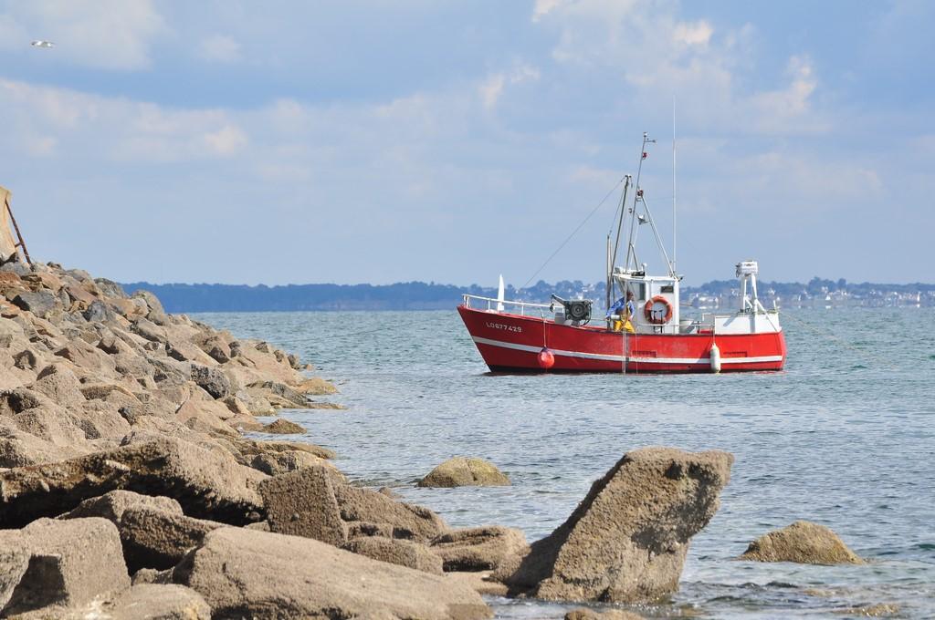 Pêche petit bâteau côtier Ayrodr32