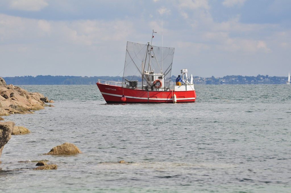 Pêche petit bâteau côtier Ayrodr33