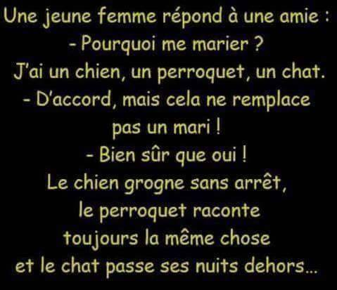 humour - Page 4 10996110