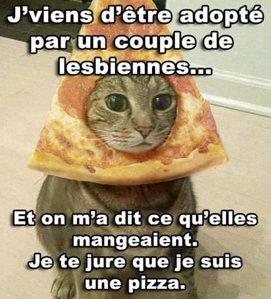 humour - Page 4 11232110