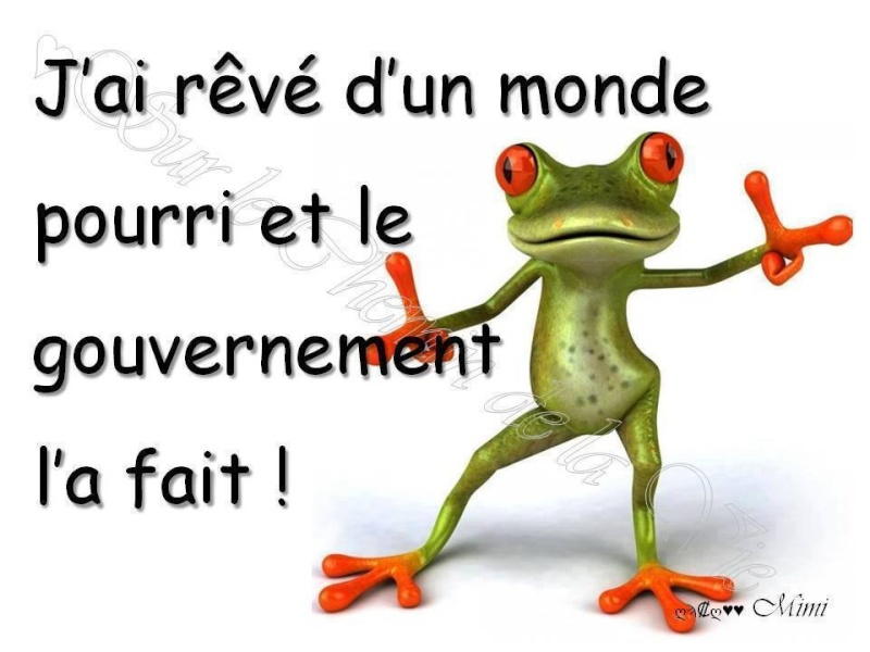 humour - Page 2 11240010