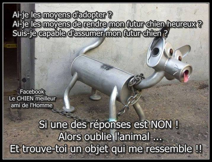 humour - Page 4 11887910