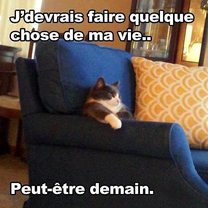 humour - Page 2 12143210