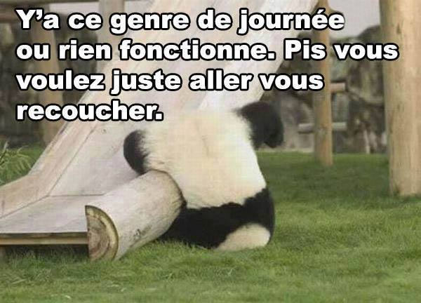 humour - Page 3 12805910