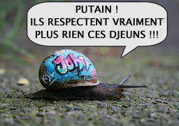humour - Page 2 12809710