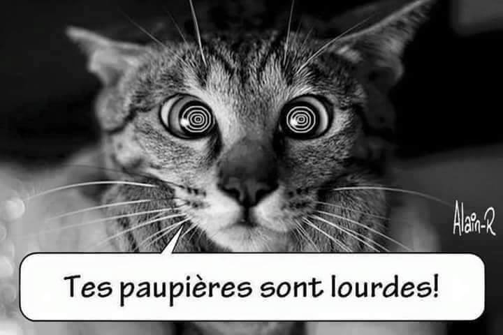 humour - Page 3 12924511
