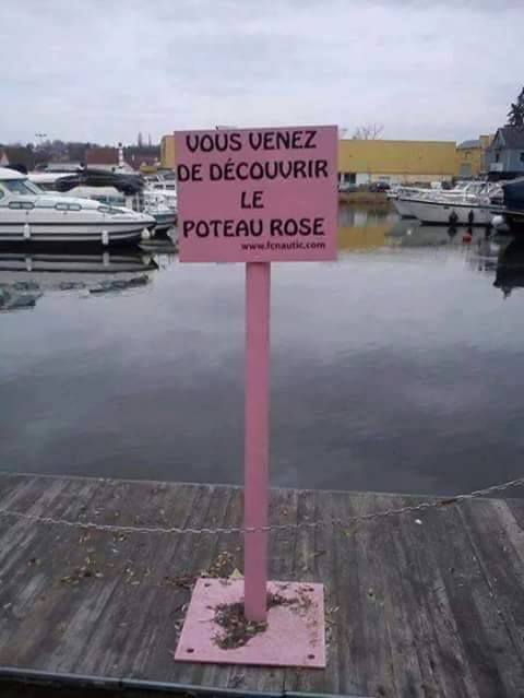 humour - Page 5 12931210