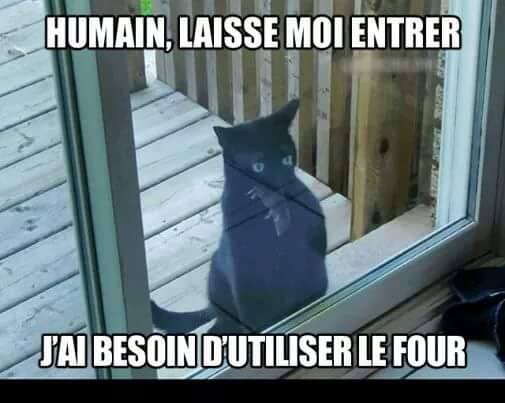 humour - Page 6 12933010