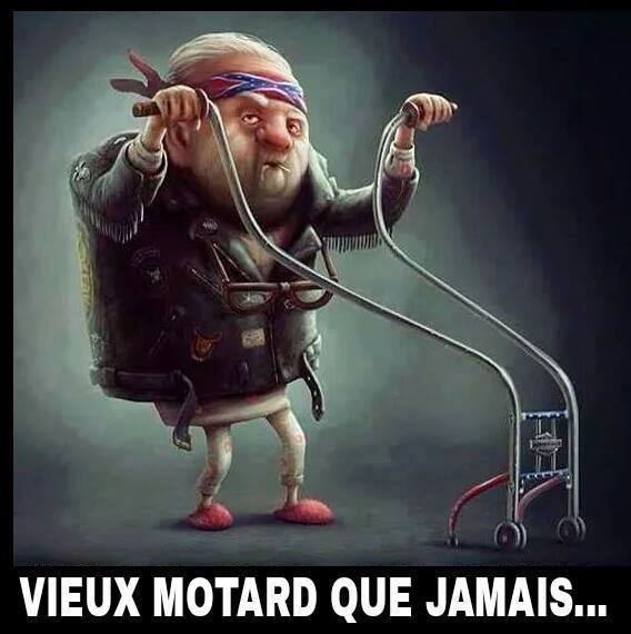 humour - Page 40 13315712