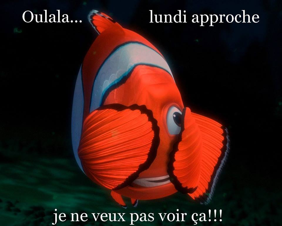 humour - Page 40 13325710