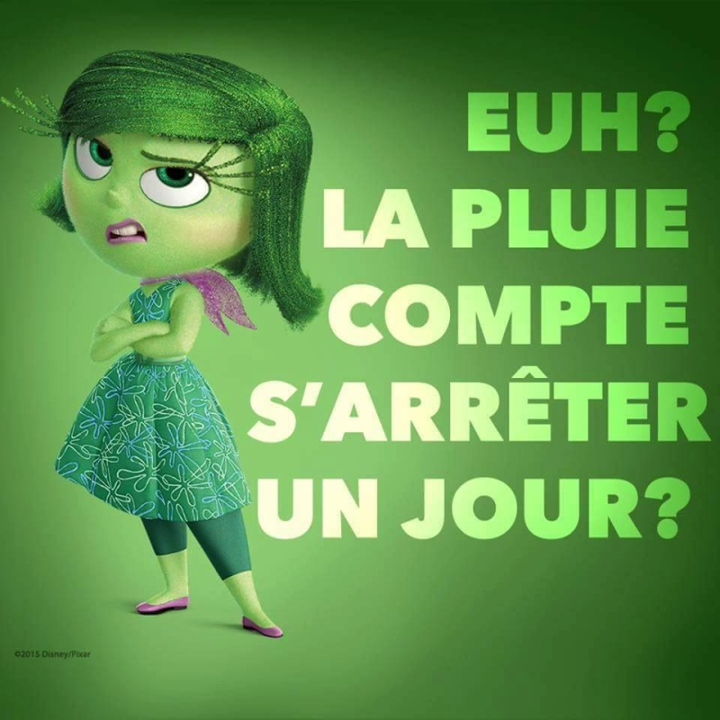 humour - Page 2 13331012