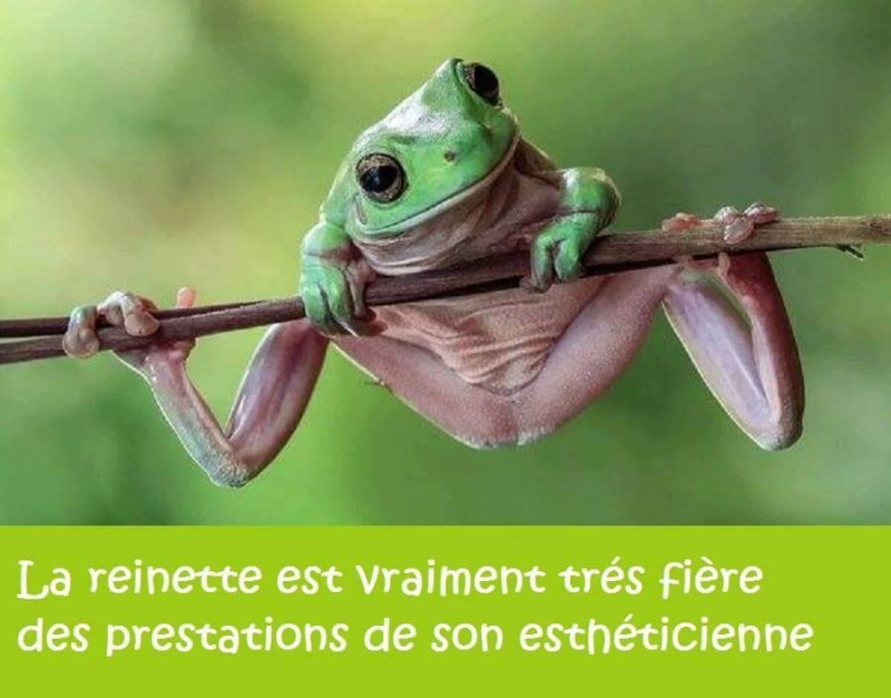 humour - Page 2 13342811