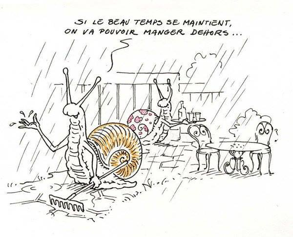 humour - Page 3 13346510