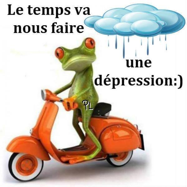 humour - Page 3 13346610