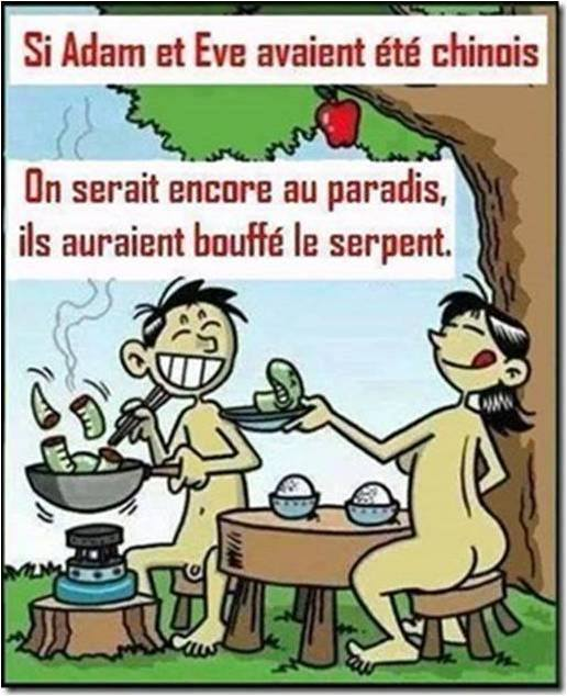 humour - Page 5 16015510
