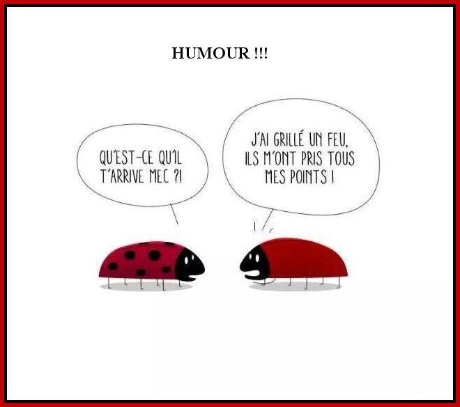 humour - Page 5 Att00014