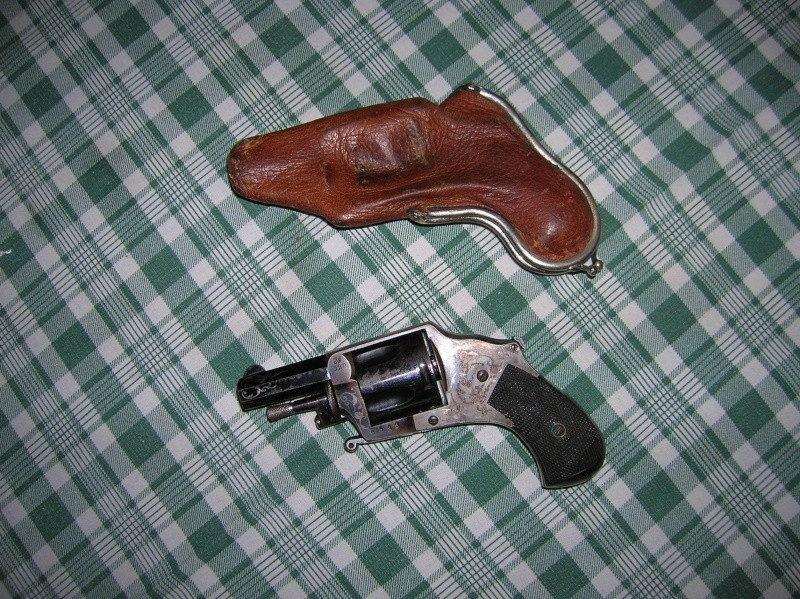 Pistolet BULLDOG calibre 320 Dscn1810