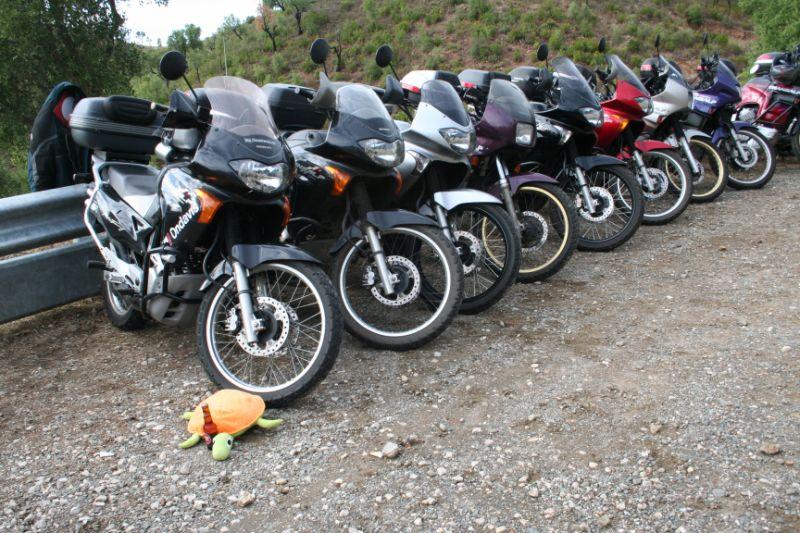 IX Passeio/Encontro/1º Aniversário do Fórum Transalp 2008 - Página 4 Img_6829