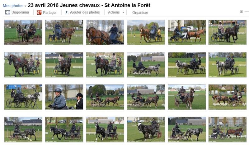 23 et 24 Avril - St Antoine la forêt - Reportage photo et clip de synthèse Page_p10