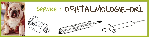 Service : OPHTALMOLOGIE-ORL