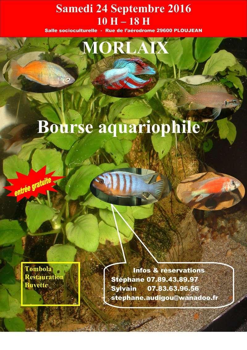 3e BOURSE AQUARIOPHILE MORLAISIENNE Affich10