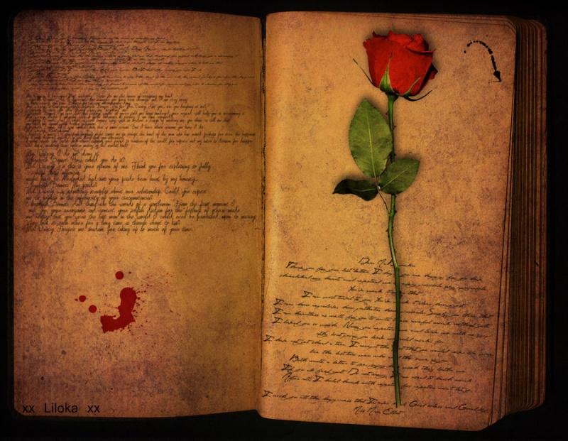 Тъмно мастило!..Следи..от..несподелени..тайни... Diary_10