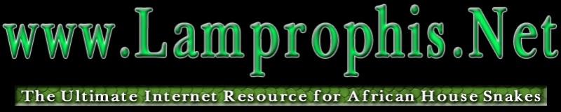 Lamprophis.net Lampro10