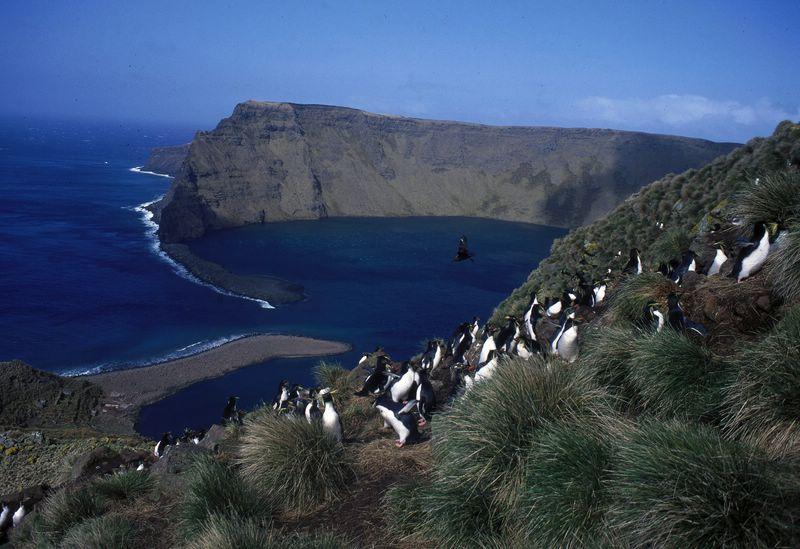 Ile Saint-Paul, Océan Pacifique Ile_sa10