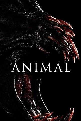 [film] Animal – Il segreto della foresta (2014) La_ter30