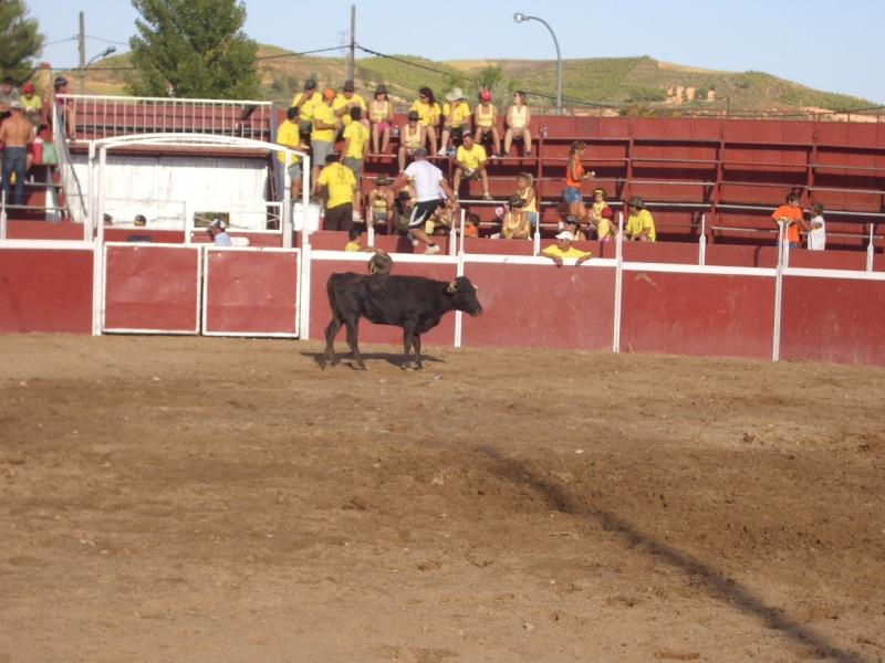 Fotos y mas fotos  todo toros Canari68