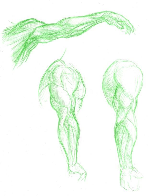 [Horante] Cosmic Samouraï Anatom14